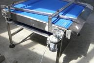 PLASTIC MODULAR CONVEYOR FOR EGGS