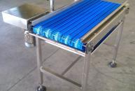 Conveyor for eggs - agribusiness industry